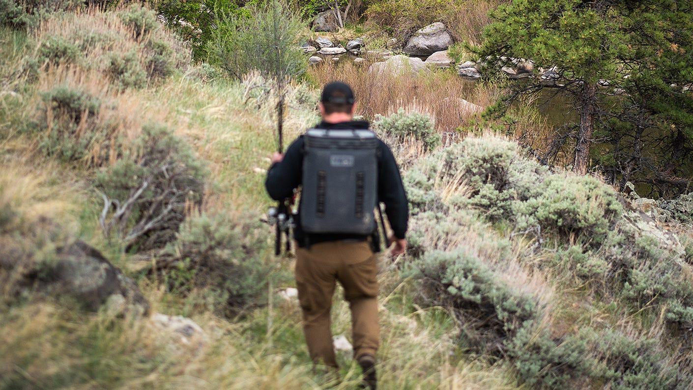Hunter walking through woods.
